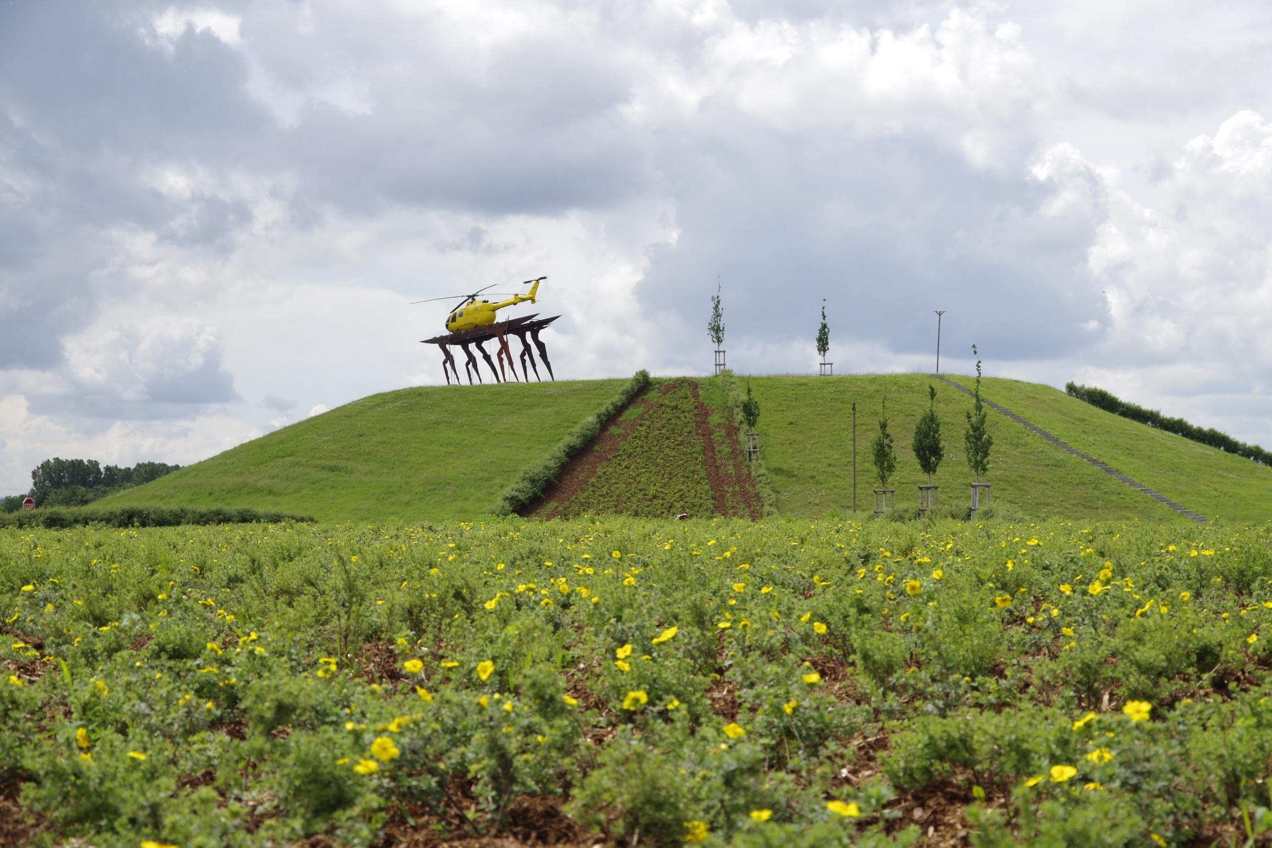 Mennigmann Garten- und Landschaftsbau GmbH Begrünung