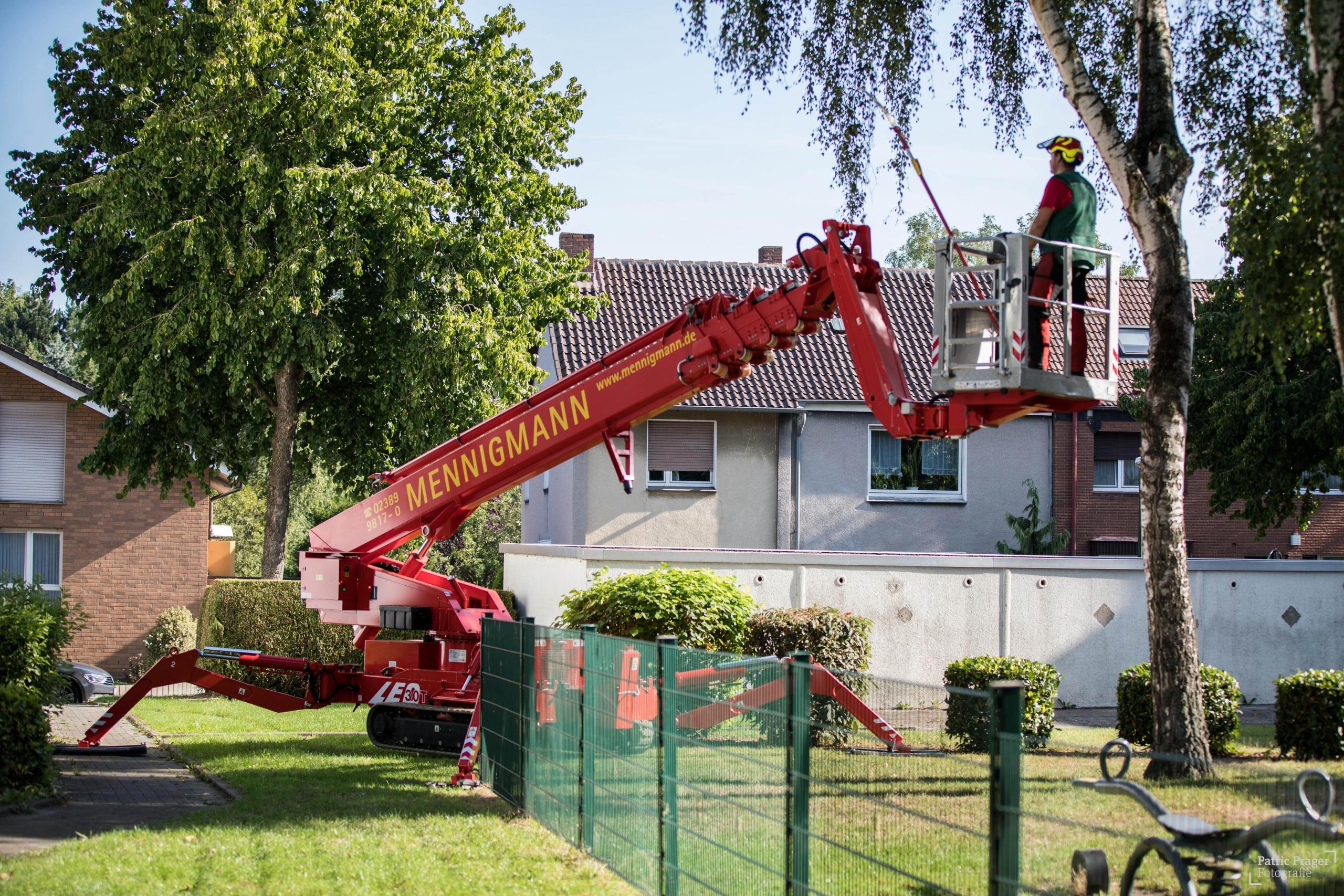Mennigmann Garten- und Landschaftsbau GmbH Team Baumfällung
